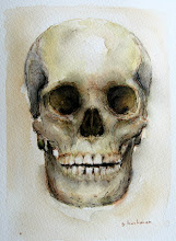 The Human Skull ....Watercolor and description