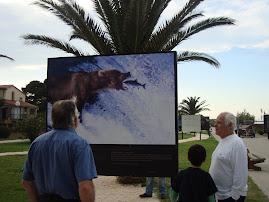 2009 Junho - Exposição de Yann Arthus - Bertrand - Home - Argelés-sur-Mer