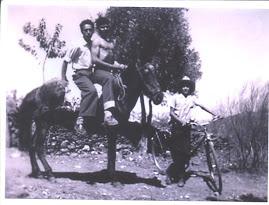 1955 - Alfândega da Fé