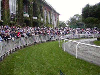 Curlin, Jockey Club Gold Cup at Belmont Park, 2008
