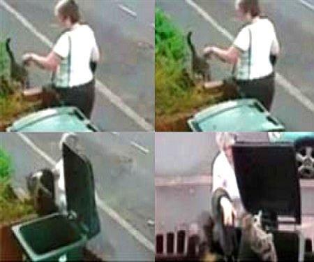 Una mujer británica ha sido pillada tirando a una gata a la basura ...