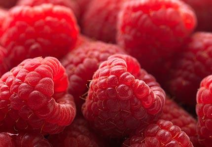 http://1.bp.blogspot.com/_Jxm6R_cGmh4/TKitZzLZDVI/AAAAAAAAAFE/ZpVbU3b3jrM/s1600/Raspberries.jpg