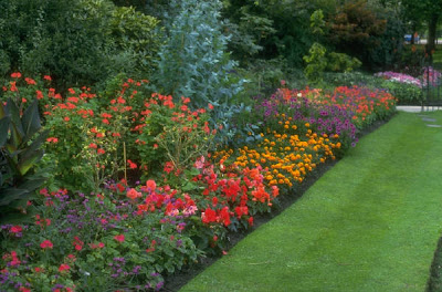 gardening tips and ideas on Posted By Madz At 3 53 Pm 2comments