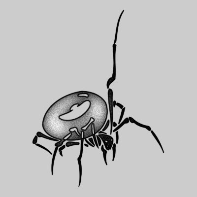 You can DOWNLOAD this Spider Tattoo Design - TATRSP21