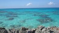 Hier is rif bij Conception Island, mooi om te snorkelen.