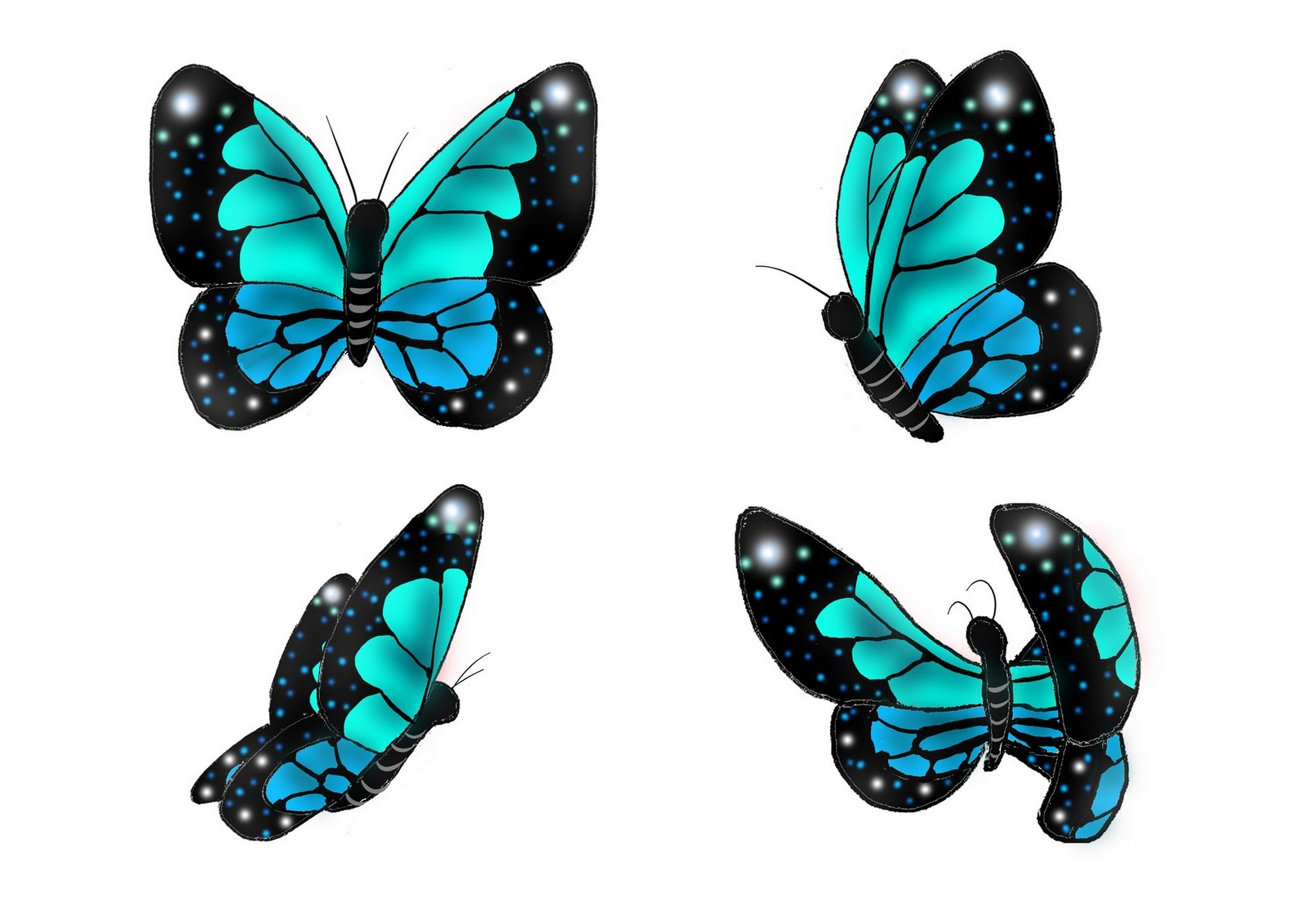 Papillon Dessin Ecosia