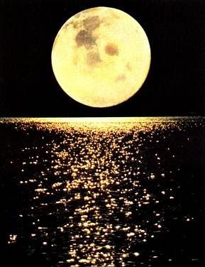Camí cap a la Lluna
