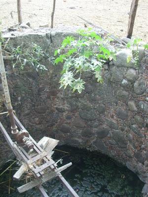 Visita al terreno de la noria con tunel y la aparición IMG_0202+%28Large%29