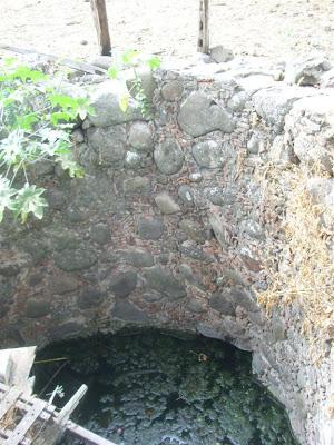 Visita al terreno de la noria con tunel y la aparición IMG_0208+%28Large%29