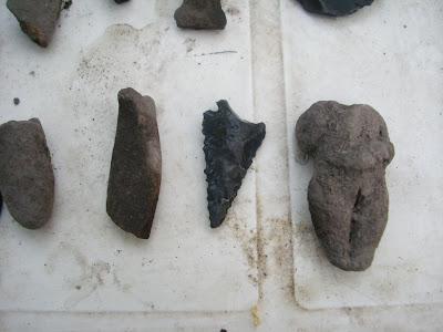 Algunas piezas arqueológicas - Caracol Trompeta IMG_1220+%28Large%29