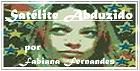 Satélite Abduzido