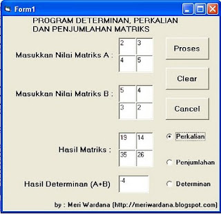program aplikasi matriks dan determinan dengan VB