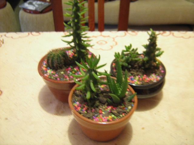 florer a albafika arreglos para oficina y centros de mesa