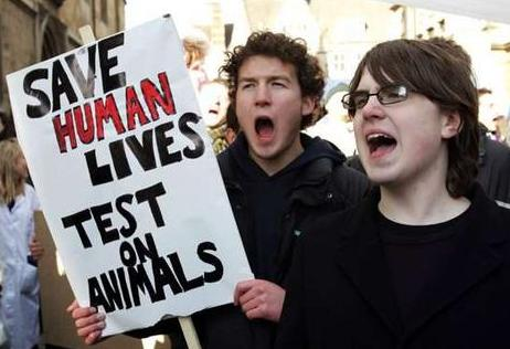 the controversy surrounding animal experimentation Animal experimentation:  but from many surrounding  and the inaccurate results of animal experimentation, there is a big controversy with such.