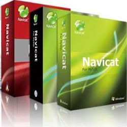 Navicat Premium v8.2.11