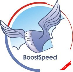  Auslogics BoostSpeed 5.0.5