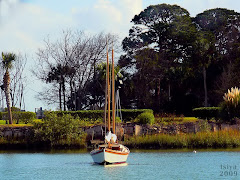 HOSPITAL CREEK, ST. AUGUSTINE