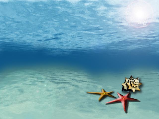 Imagenes fondo del mar imagui - Fotos fondo del mar ...