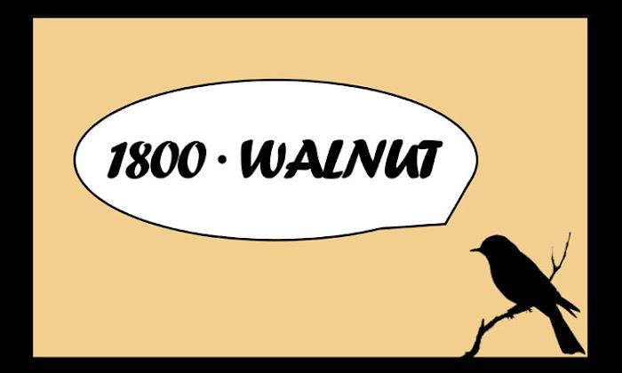 1800 WALNUT