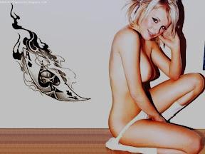 Bikini Wallpapers Amy Green 1
