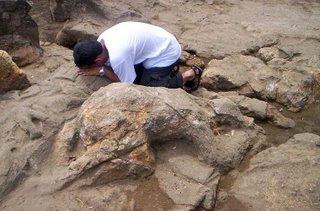 Batu Si Tanggang