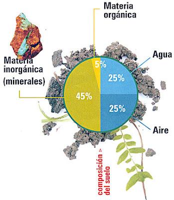 Manejo y conservaci n de suelos el suelo for Componentes quimicos del suelo