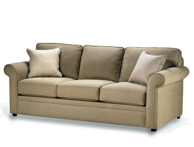 Pet Friendly Leather Sofa How To A Home
