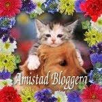 AMISTAD BLOGUERA