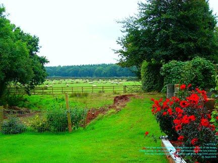 [Southey+Garden+Devon.jpg]