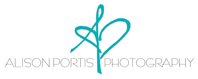 alison portis photography