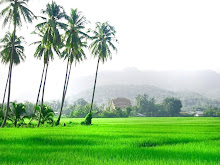 Desa Halamanku