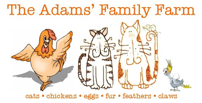 The Adams&#39; Family Farm