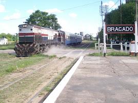 BRAGADO - LINCOLN