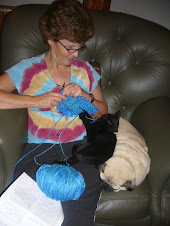 My knitting buddies