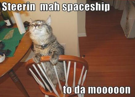 lol cat moon