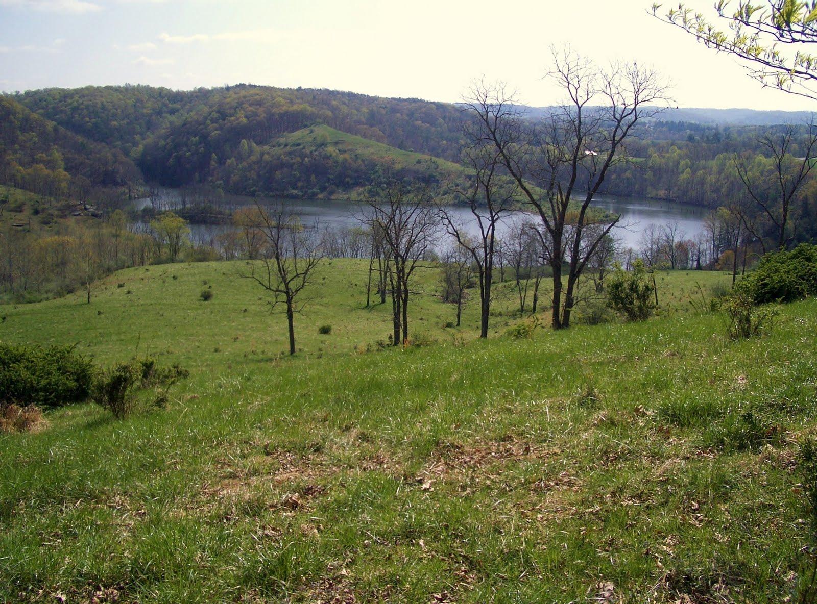 http://1.bp.blogspot.com/_KEqW-2dhfX0/S837mjZ3OyI/AAAAAAAABDc/5OZqG61Td6w/s1600/Lake+View+1.jpg