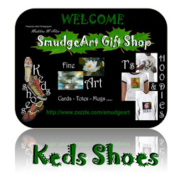 SmudgeArt Keds Shoes