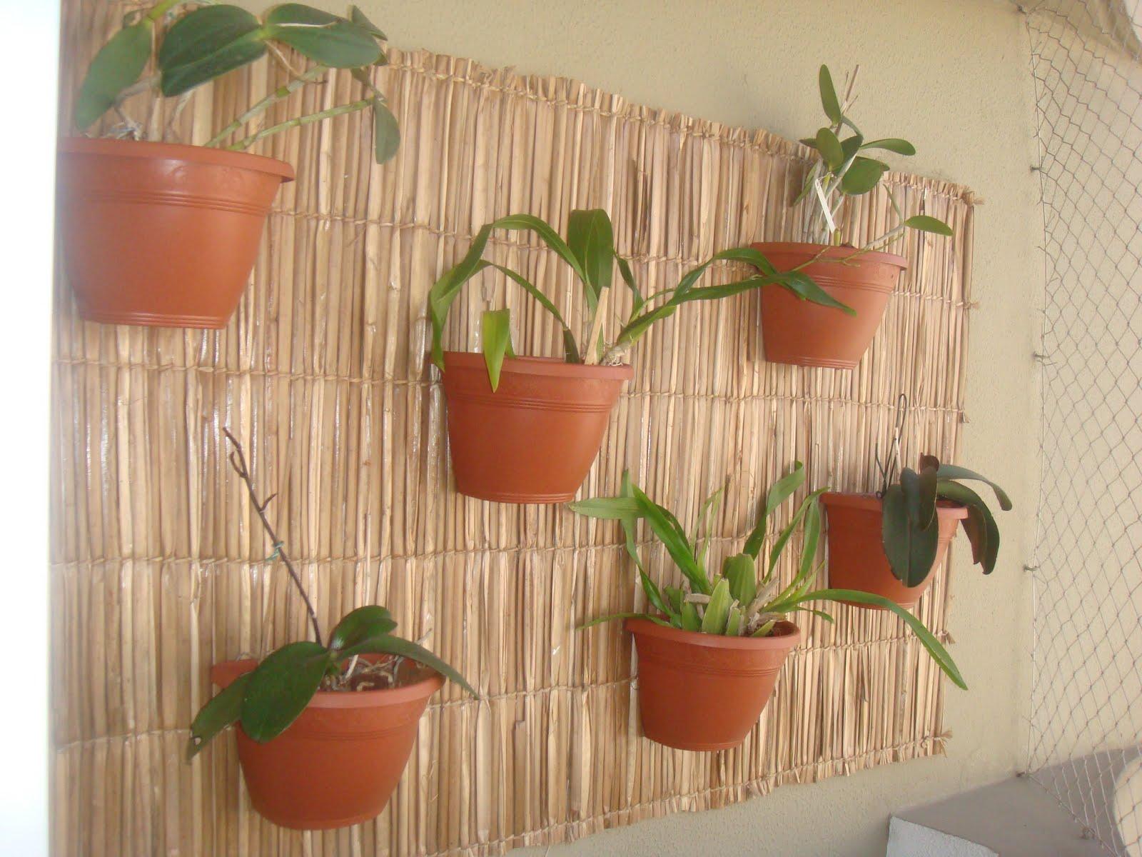 trelica bambu jardim : trelica bambu jardim:Essa idéia foi realizada por Elize Al Makul, sogra da minha irmã.