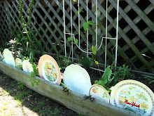 Vintage China Plate Garden Border!