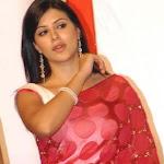 Yuvraj Singh's New Girl Karishma Kotak