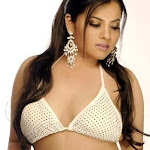 Sharadha Sharma Sexy Pics