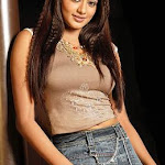 Sexy Priyamani Hot Stills