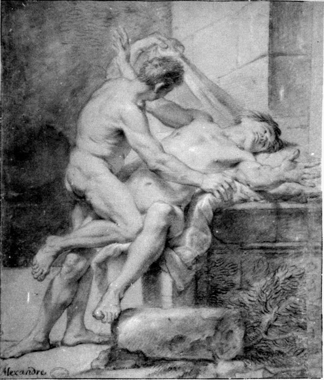 Анимальный секс википедия