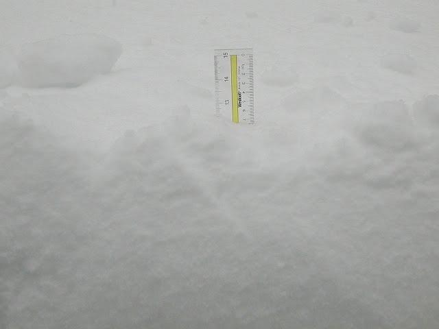 [SNOW!.JPG]