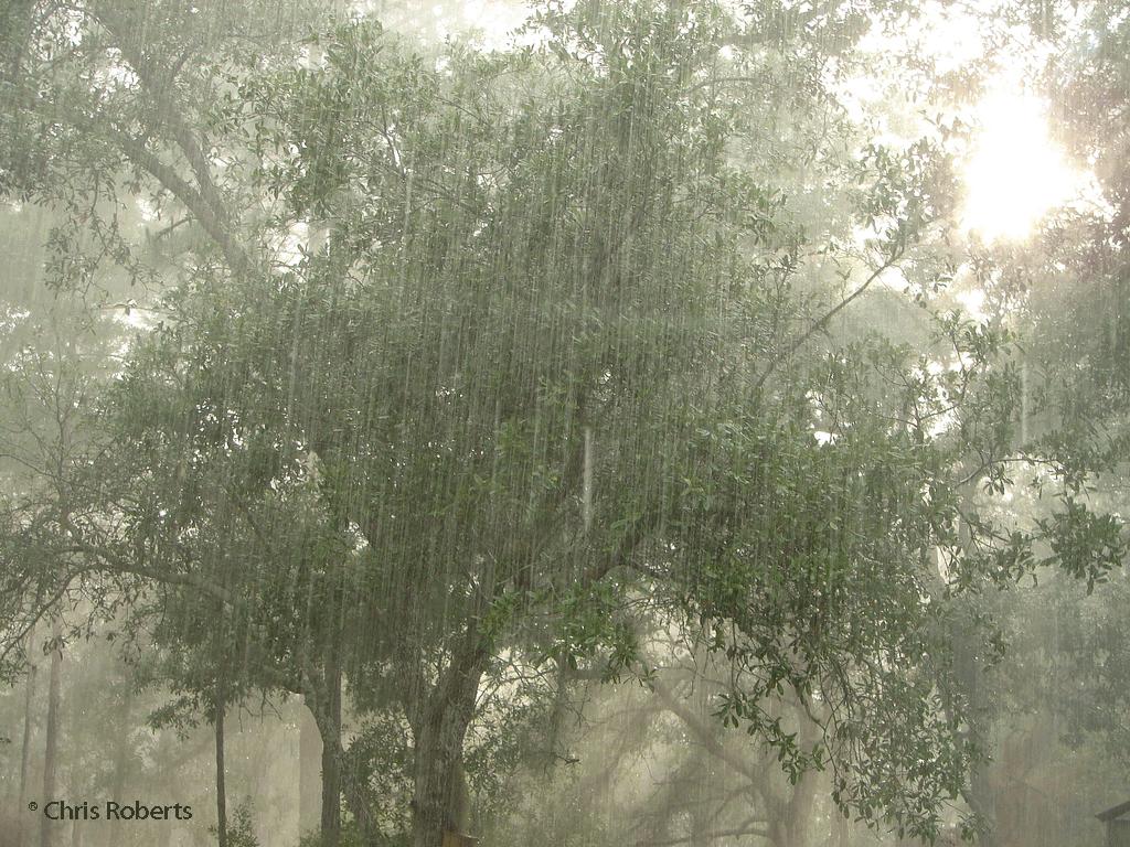 [rain.htm]
