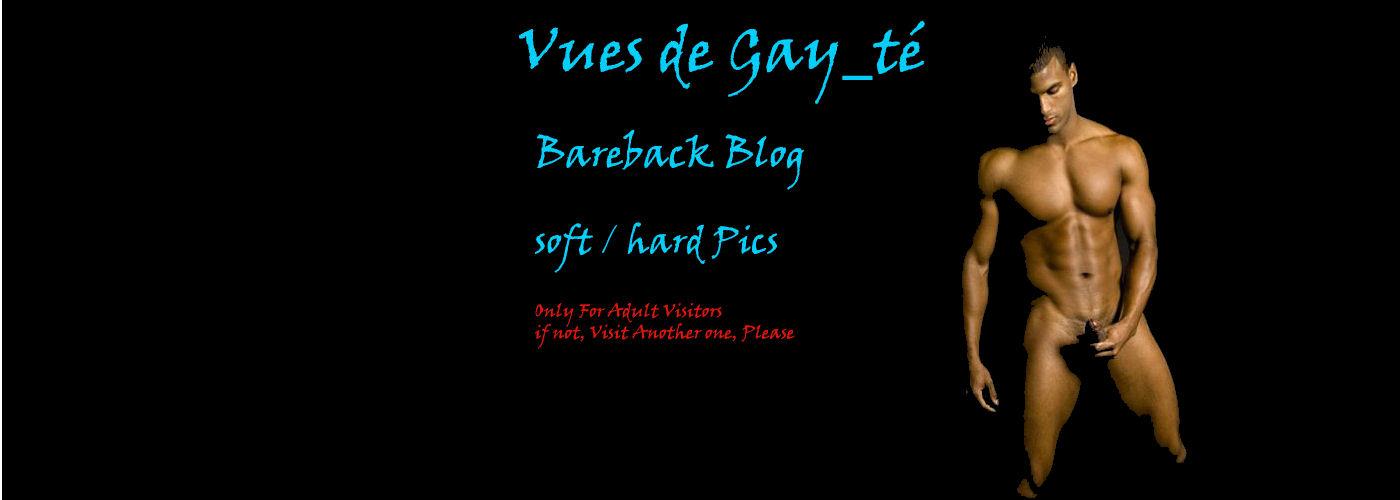 Vues de Gay_te ...