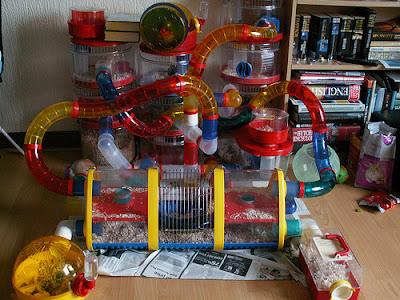 hamster-cage1.jpg