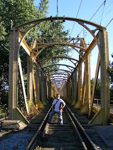 San Rosendo_Puente