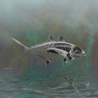 digital image - finish fish