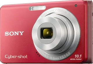 Sony Cybershot DSC-180 Camera